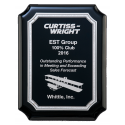 Acrylic Plate Award
