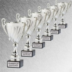 Men's Bowling Trophy