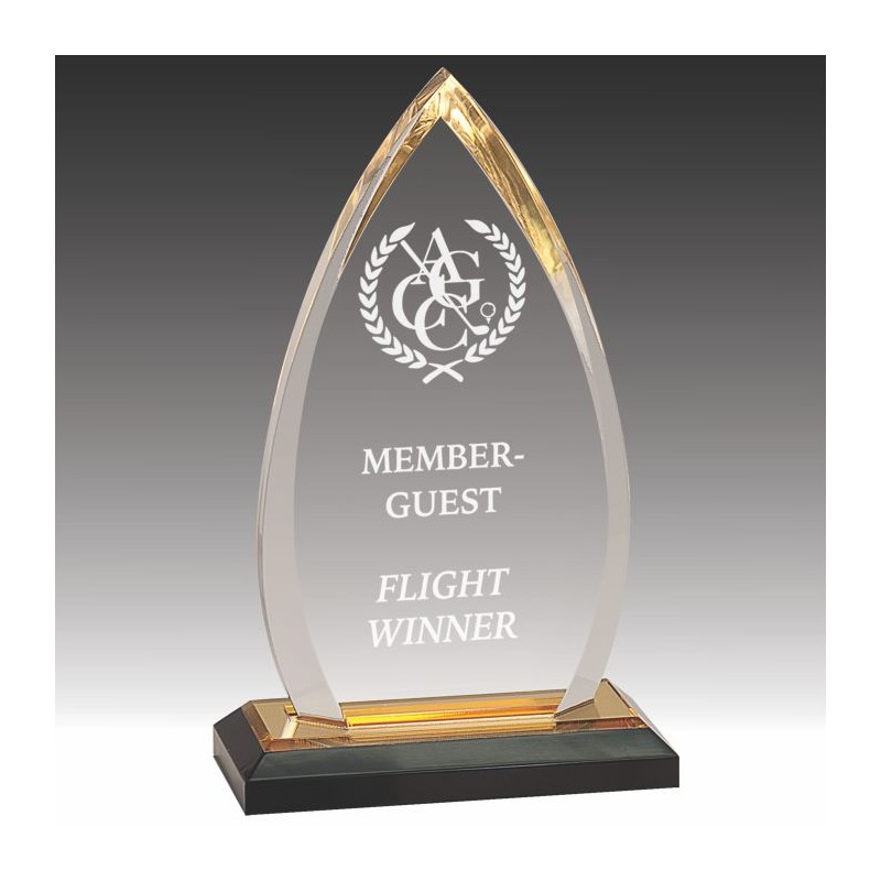 Starphire Award