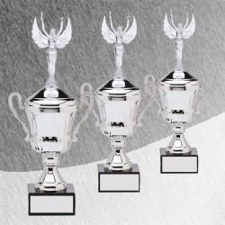 Award Cup Series 0