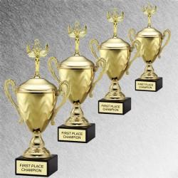 Award Cup Series 9