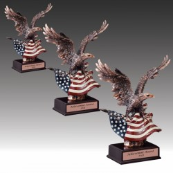 USA Flag and Eagle Award
