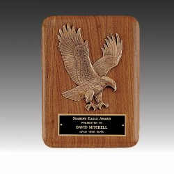 Eagle Landing Relief Plaque